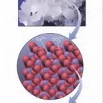 کلسیم کربنات (CaCO3)