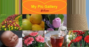 نمایشگاه عکس (My Pic Gallery)